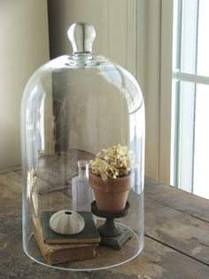 Glass Cloche Medium            can be used as a bell jar, terrarium or a food dome                        SALE