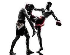 Muay Thai Dövüş Sanatı FULL Eğitim Seti