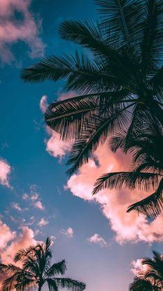 lisa aesthetic palme strand wolken hintergrundbild hintergrund feiertage tropisch insel fondecraniphone pal palme strand wolken hintergrundbild hintergrund feiertage tropisch insel fondecraniphone pal Lisa Janke blnlisaa w a l l p a p nbsp hellip Wallpaper Pastel, Cloud Wallpaper, Sunset Wallpaper, Iphone Background Wallpaper, Aesthetic Pastel Wallpaper, Aesthetic Wallpapers, Tropical Wallpaper, Beach Phone Wallpaper, Iphone Background Beach