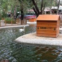 Çankaya, Ankara'da Park