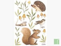 These are gorgeous - Little Forest Animals Wall Stickers Tier Wallpaper, Forest Wallpaper, Animal Wallpaper, Forest Illustration, Watercolor Illustration, Squirrel Illustration, Illustration Kids, Forest Animals, Woodland Animals