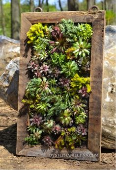 How To Make A Beautiful Vertical Succulents Planter   -- Don't miss out! Follow DIY Fun Ideas on facebook: www.facebook.com/diyfunideas