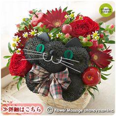 赤の花ネコ (くろねこ)