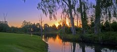 Package 1 George Combo Three Nights' accommodation and Playing Five Golf Courses Famous Golf Courses, Public Golf Courses, St Andrews Golf, Coeur D Alene Resort, Augusta Golf, Golf Course Reviews, Golf Tour, Coeur D'alene, Golf Carts