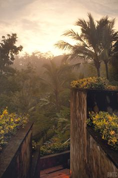 Ubud, Bali Wouldn't mind waking up to this! Beautiful Places To Visit, Oh The Places You'll Go, Beautiful World, Places To Travel, Java, Cool Pictures, Cool Photos, Tropical, Ubud