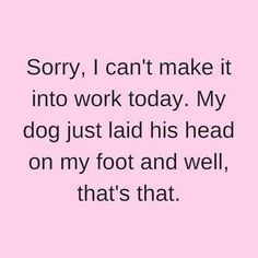 """""""...well, that's that."""" #dogs #doglovers"""