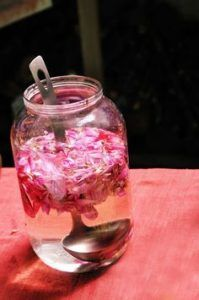 Rose water & it's miracles for glowing skin - DIY Beauty Recipes 2019 Best Punch Recipe, Punch Recipes, Natural Health Remedies, Home Remedies, Making Rose Water, Homemade Rose Water, How To Make Rose, Organic Roses, Rose Essential Oil