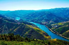 DOURO Douro Valley, Port Wine, Day Tours, Portugal, Cruise, Beautiful Pictures, Scenery, Places To Visit, River