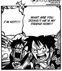 Law and Luffy-they are pretty much best friends and the only person is denial about it is Law himself lol