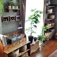 いなざうるす屋さん/りんご箱/植物達/無印良品/DIY/かご…などのインテリア実例 - 2014-07-06 05:22:27 | RoomClip(ルームクリップ)