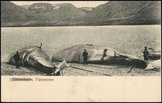 Postcards: Torshavn (Färöer) - http://youhavebeenupgraded.boardingarea.com/2016/02/postcards-torshavn-faroer/
