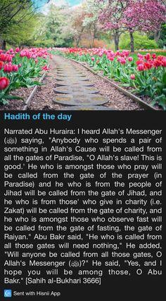 Hadith of the day Islamic Phrases, Islamic Messages, Islamic Dua, Prophet Muhammad Quotes, Quran Quotes, Qoutes, Beautiful Islamic Quotes, Islamic Inspirational Quotes, Islam Hadith