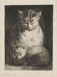 Cat and Kitten  Jean Jacques de Boissieu, French, 1736 - 1810