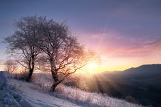 A breathtaking snowy sunrise in the Smoky Mountains!
