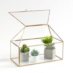 Other Image Uyova Mini Greenhouse in Glass and Brass La Redoute Interieurs