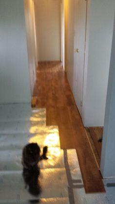 New flooring