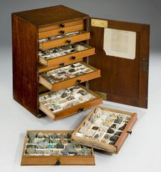 A 19th century mahogany collectors cabinet, the panelled door opening to reveal thirteen oak lined drawers, each divided into compartments containing a collection of geological specimens, the inside of the door bearing a printed paper label for �James Tennant, mineralogist by appointment to Her Majesty and the Baroness Burdett-Coutts, 149, The Strand, London WC, November 1878