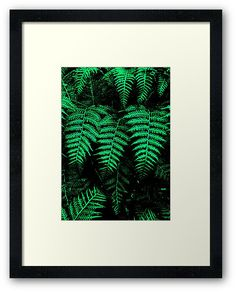 'Emerald Triplets' Framed Print by Moonshine Paradise #redbubble #emerald #nature #photography #art