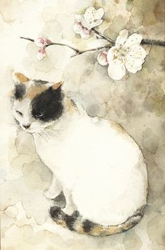 Cat and Flower  watercolor by midori yamada