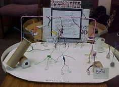 Art Lesson Ideas - Wire Circus and More Circus Art