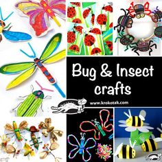 Bug&Insects crafts