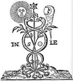 Study spagyrics (Seal of the spagyric laboratory)