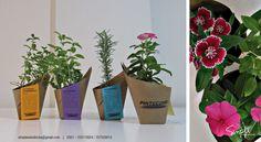 Regalos de fin de año para @pintecord Flores + Aromáticas en #NETAS