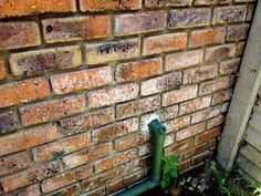 Efflorescence is often dismissed as just being an eyesore and is given surface treatment only. Home Inspection, Brick Walls, Brickwork, Good To Know, Concrete, Powder, Surface, Sign, Face Powder