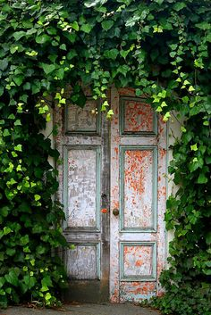 Green Ivy Covered Doorway-secret garden anyone? Garden Doors, Garden Gates, Secret Garden Door, Old Doors, Windows And Doors, Front Doors, Front Entry, Go Green, Green Colors