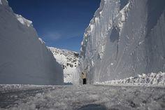 Hardangervidda - Sognefjell - Strynefjell