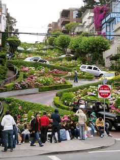 Free things to do in San Francisco... love Lombard Street! Trekaroo.com/blog
