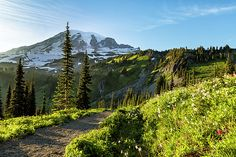 A Hike to Remember by Belinda Greb #Mountrainier #landscapephotography #fineartphotography #naturephotography