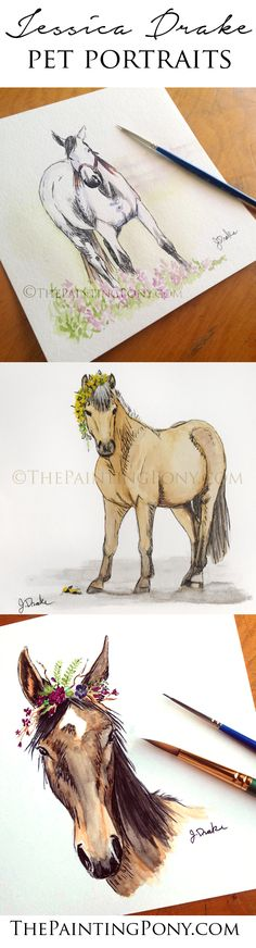 Horse and Pet portraits by equine artist Jessica Drake. Whimsical pen and watercolor paintings of horses and ponies for just $35. Commission your own original artwork - a great memorial gift for any equestrian horse lover and anyone who enjoys horseback riding from hunter jumper to dressage and cowgirl style barrel racing. Equestrian home decor wall art!