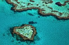 Here's Everything You Need To Know About Visiting The Great Barrier Reef