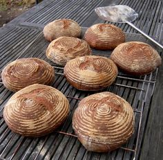Real Food from a Small Island: Wood-fired Oven: Part 3 - Firing the Oven