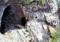 Fossil Hominid Sites in Cradle of Humankind, Gauteng. Fossil Hominid Sites at Cradle of Humankind UNESCO World Heritage Site South Africa. The Fossil . Stone Age, Old Stone, Limestone Caves, Game Lodge, Types Of Stones, Natural Resources, Types Of Houses, World Heritage Sites, Fossil