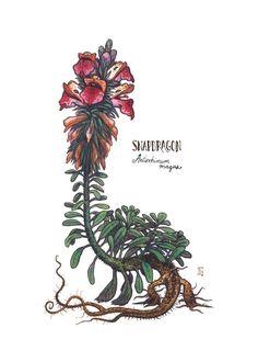 Snapdragon Sprite, an art print by Emma Lazauski Creature Concept Art, Creature Design, Magical Creatures, Fantasy Creatures, Plant Monster, Monster Design, Les Oeuvres, Character Art, Fantasy Art