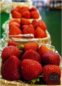 Health healthy 19 Best Benefits Of Strawberries For Skin, Hair, And Health Strawberry is not just a delicious fruit but also a very healthy one. Here are the health, skin and hair benefits of strawberries. Healthy Life, Healthy Snacks, Healthy Eating, Healthy Recipes, Healthy Fruits, Health Tips, Health And Wellness, Wellness Tips, Strawberry Health Benefits