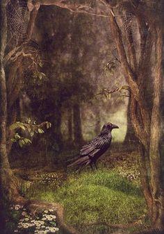 Raven...Natalia Maroz