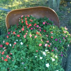 A great idea for landscaping with old wheel barrel