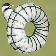 Round Nester - Keep baby birds dry, and make nest building easier on the parents.