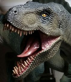 A close up of the Tyrannosaurus rex dinosaur model (Pegasus T. rex kit) made up by David.