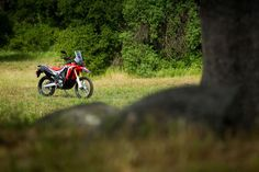 Nice Honda 2017: The 2017 Honda CRF250L gets some updates while it also spawns the all new CRF250  MOTOS ESPECIAIS