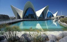 I want to go here SO BAD. This is the Oceanografico in the City of Arts and Science in Valencia, Spain. It is Europe's largest aquarium Ciudad de Las Artes y Ciencias Andalucia Spain, Ibiza Spain, Malaga Spain, Cordoba Spain, Granada Spain, Seville Spain, Madrid Travel, Barcelona Travel, Oscar Niemeyer