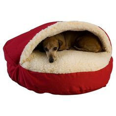 Snoozer Cozy Cave Hooded Dog Bed   Wayfair