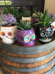 Trader Joe's Find of the Day - Makeup and Beauty Blog      Normally the skull decoration thing isn't my cup of tea. I dunno.... The eye sockets freak me out, but I saw these Dia de los Muertos-themed planters at Tr http://www.makeupandbeautyblog.com/just-for-fun/trader-joes-find-day/?utm_campaign=crowdfire&utm_content=crowdfire&utm_medium=social&utm_source=pinterest
