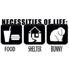3 necessities of life poster