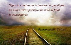 Carmen Cifuentes (@carmencifu)   Twitter