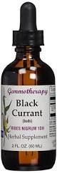 Gemmotherapy Black Currant
