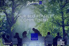 Blu Planet meetings